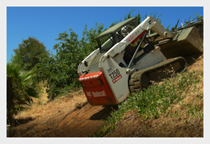 a-1-hauling-demolition-terry-arrighi-bobcat-bay-area-3.png